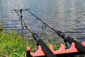 фидерня рыбалка