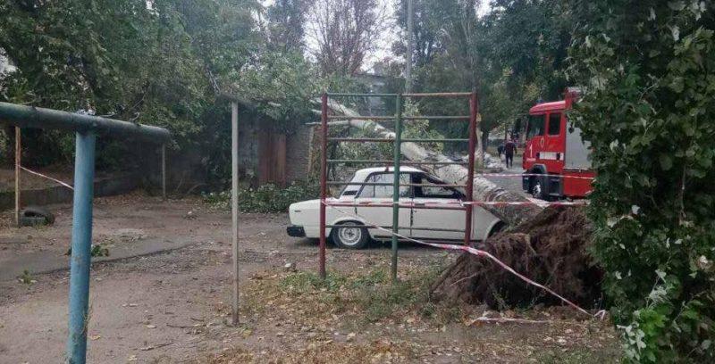 падали аварийные деревья
