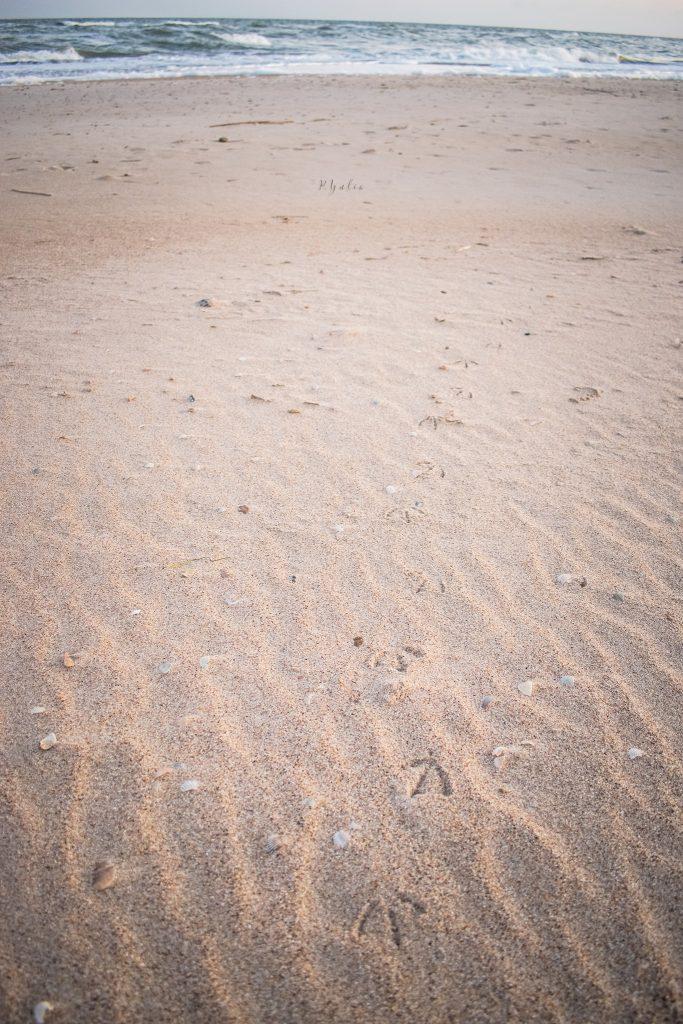 Фотограф показала как выглядит осенью пляж Бердянска - фото