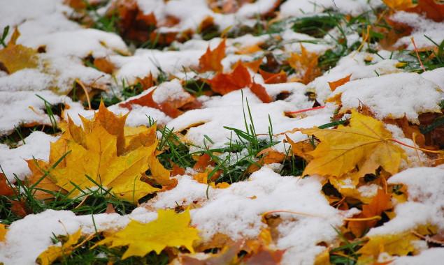 Стало известно, когда в Запорожье ожидается первый снег
