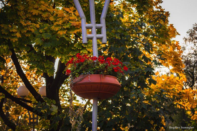 Яркая осень в самом центре Запорожья - фото