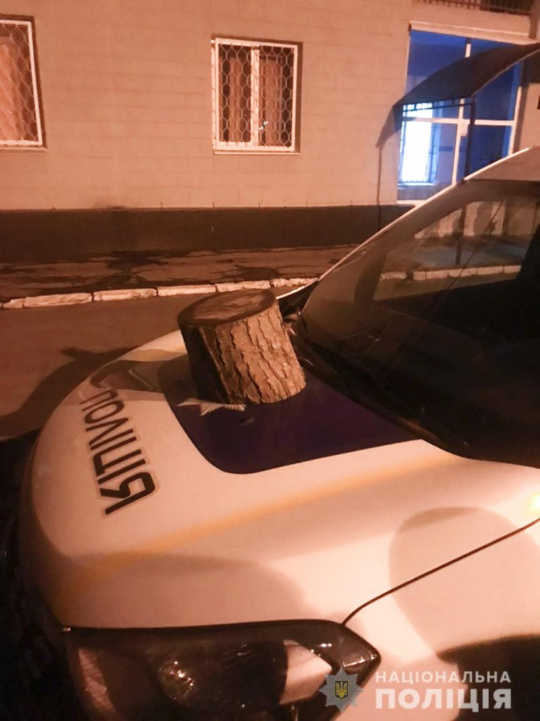 бросил бревно на авто полиции