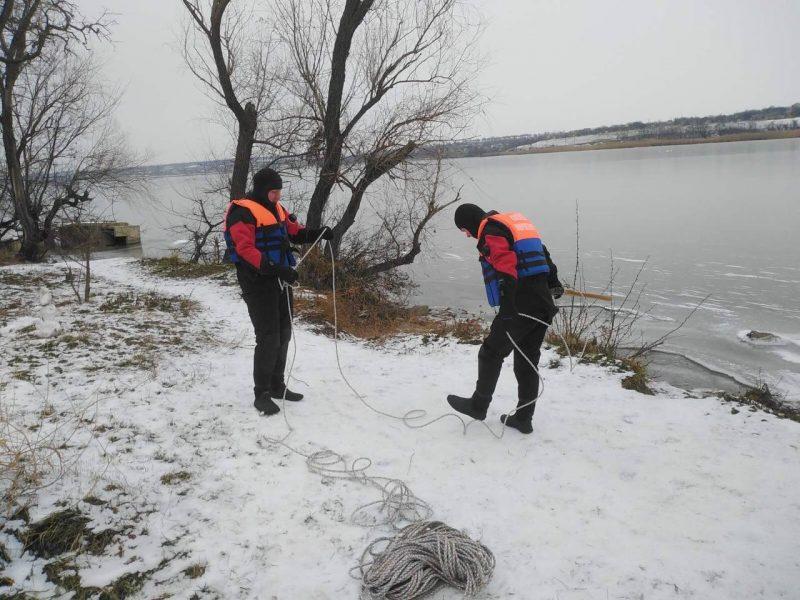К спасателям обращаются жители области с просьбами помочь лебедям