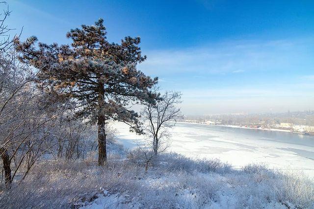 Хортица зимой