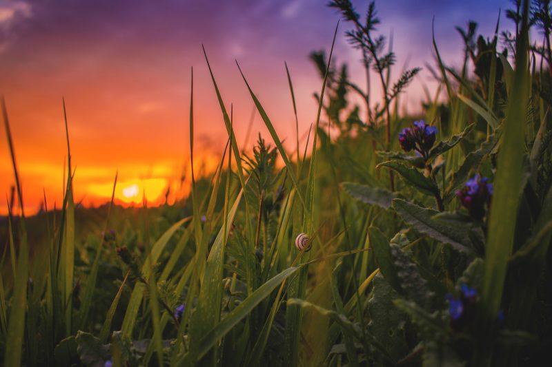 В Бердянске запечатлели удивительно красивый закат