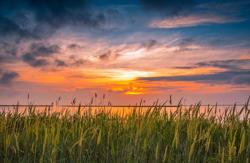 Как выглядит живописный морской пейзаж в Бердянске - фото