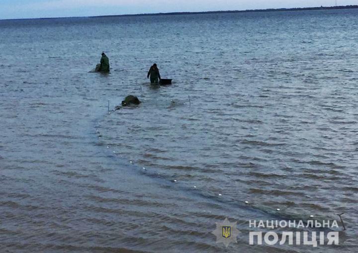 В Запорожской области браконьеры ловили рыбу и креветок