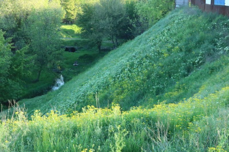 склон на Зеленом Яру