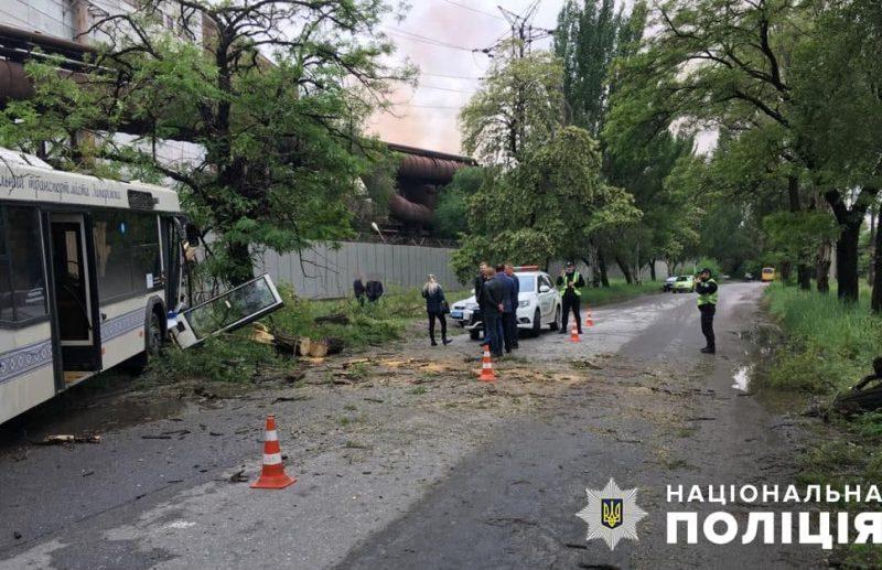 Водитель автобуса съехал на обочину и врезался в дерево