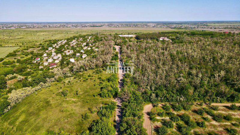 Как выглядит природа Мелитополя с высоты птичьего полета - фото