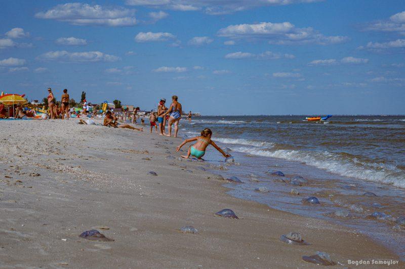 Повелителем отдыха на запорожских курортах в этом году стала медуза