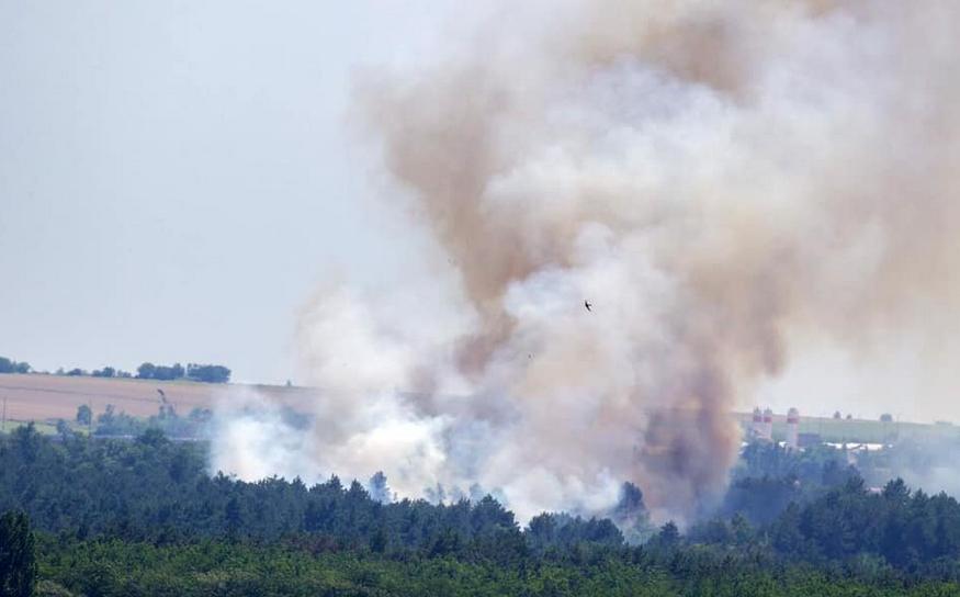 На Хортице начался масштабный пожар: подозревают поджог