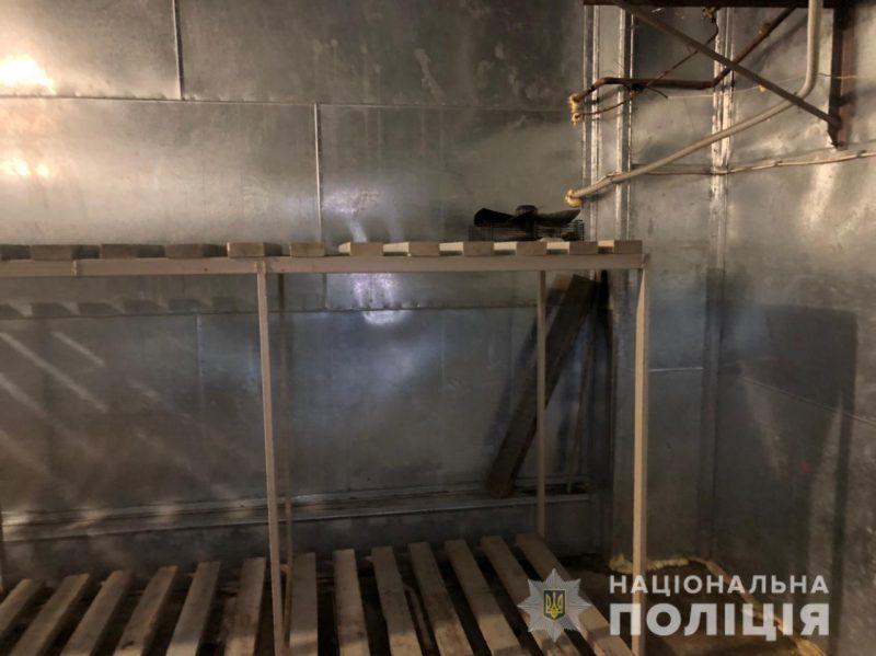 рыба холодильник
