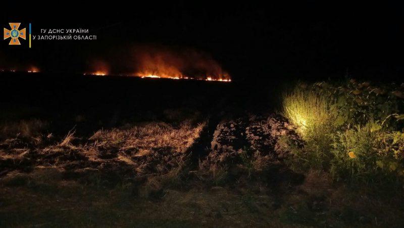 спасатели за сутки шесть раз выезжали на природу - тушить пожары в экосистемах