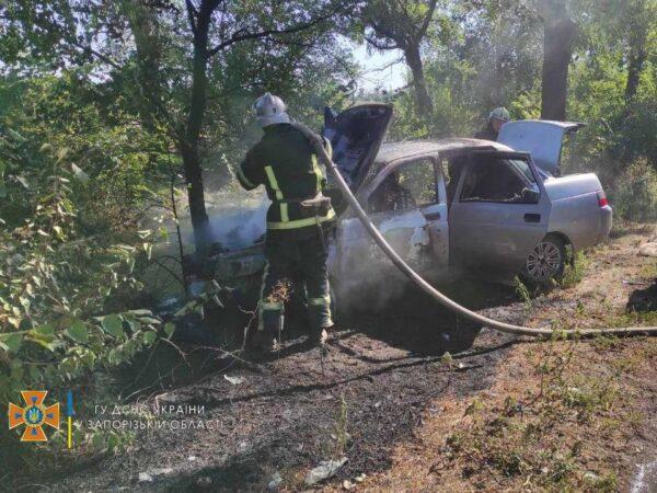Под Запорожьем авто слетело с трассы, врезалось в дерево и загорелось (ФОТО)