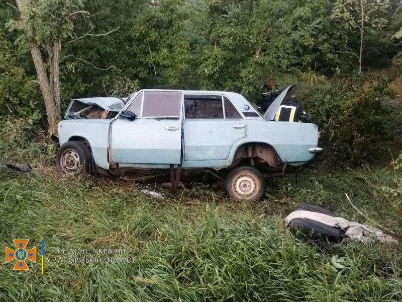 В Пологовском районе произошло ДТП