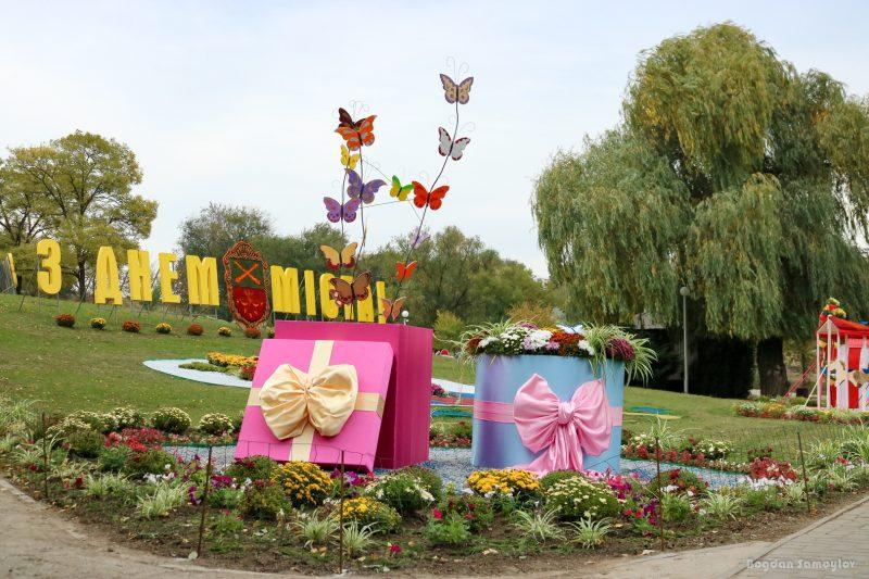 Огромный цветок и музыкальные инструменты из хризантем: как выглядит праздничная композиция в запорожском парке
