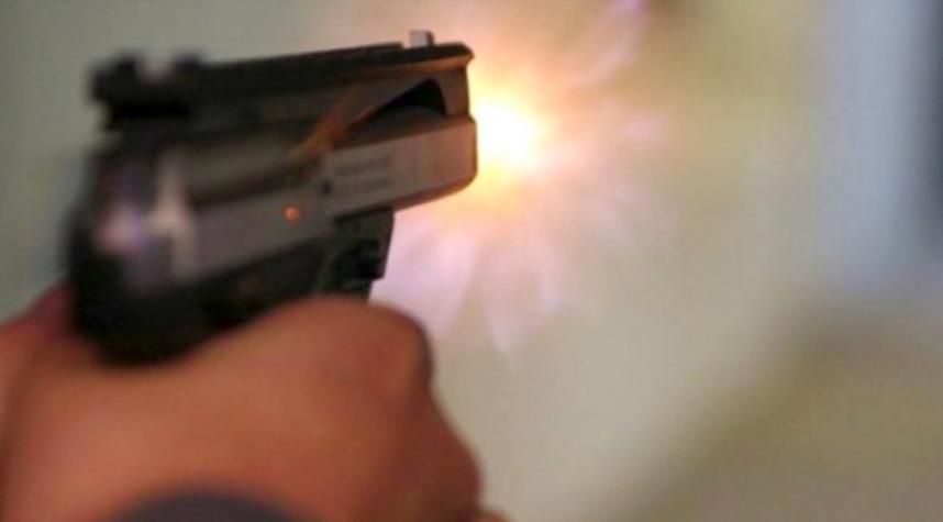 В Кирилловке отдыхающий стрелял из пистолета по бродячим собакам