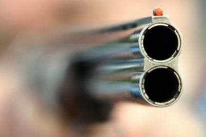 14-letnego-podrostka-v-pitere-zastrelil-syn-sudi-svidetel-dal-pokazaniya.jpg