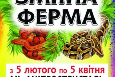 afisha-meropriyatij-v-zaporozhe-na-vyhodnye-29-02-01-03.jpg