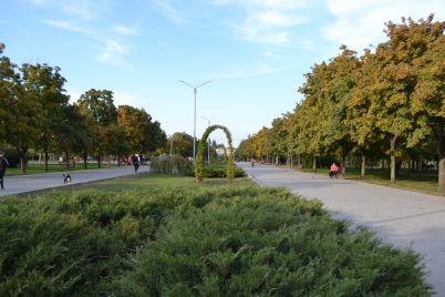aktivisti-naveli-poryadok-v-parku-gagarina.jpg