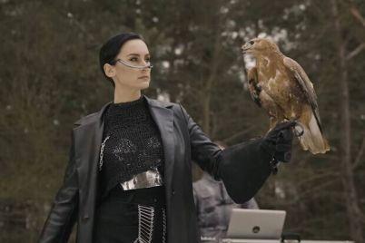 bez-stressov-i-pri-ornitologah-gruppa-go_a-otvetila-na-obvinenie-zoozashhitnikov.jpg