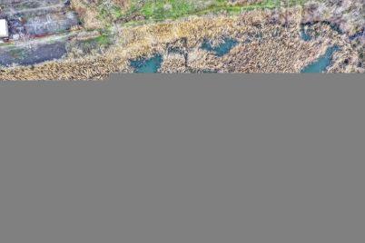 bloger-pokazal-kak-vyglyadyat-ostatki-gorodskogo-sada-v-zaporozhskoj-oblasti-foto.jpg