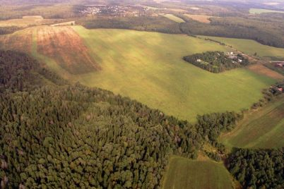 chid197-zemli-tisyachi-gektariv-v-zaporizkij-oblasti-nadavalis-okremim-lyudyam.jpg