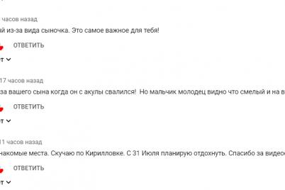 chto-to-poshlo-ne-tak-bloger-riskoval-zhiznyu-syna-zapisyvaya-rolik-ob-azovskom-more-video.png