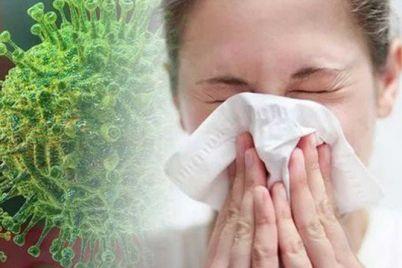 chto-zaporozhczam-nuzhno-znat-o-koronaviruse-simptomy-profilaktika.jpg