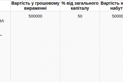 deputat-zaporozhskogo-gorsoveta-stal-sovladelczem-chastnoj-kliniki.png