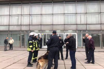 deputaty-zaporozhskogo-oblsoveta-sobaku-v-sessionnom-zale-tak-i-ne-uvideli.jpg