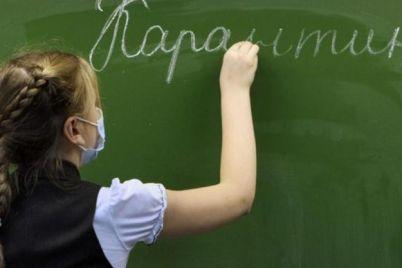 do-sih-por-bez-urokov-v-nekotoryh-shkolah-zaporozhskoj-oblasti-prodolzhaetsya-karantin.jpg