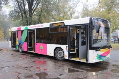 doehat-budet-legche-na-marshrut-38-pustili-bolshe-novyih-avtobusov-2.jpg