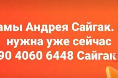 edinstvennyj-kto-vyzhil-v-smertelnom-dtp-v-zaporozhe-na-horticze-nuzhdaetsya-v-pomoshhi.jpg