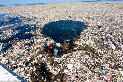 ekologi-nashli-musornyj-ostrov-razmerom-s-tri-ukrainy-video.jpg