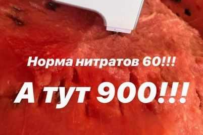 esh-na-svoj-strah-i-risk-v-melitopolskih-arbuzah-prevyshena-norma-nitratov-1.jpg