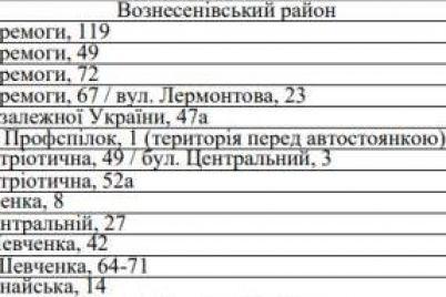 gde-kupit-novogodnee-derevo-adresa-elochnyh-bazarov-v-zaporozhe-1.jpg