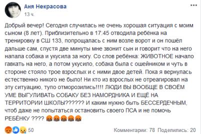 hozyaeva-stoyali-i-smotreli-v-dnepre-na-territorii-shkoly-rebenka-iskusala-sobaka.png
