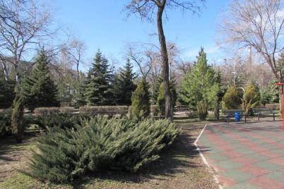 kak-vyglyadyat-parki-v-spalnom-rajone-zaporozhya-posle-zimy.jpg