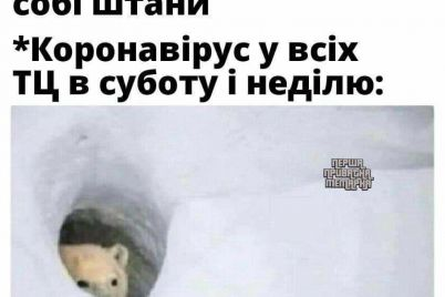 karantinnij-gumor-u-merezhi-poshiryuyut-memi-pro-koronavirus-i-novij-rik.jpg