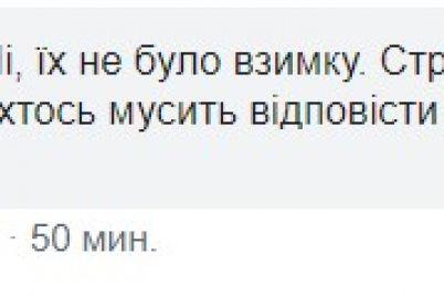 kerivnicztvo-parku-v-zaporizhzhi-de-trapilasya-tragediya-zamitad194-slidi-nedbalosti.jpg