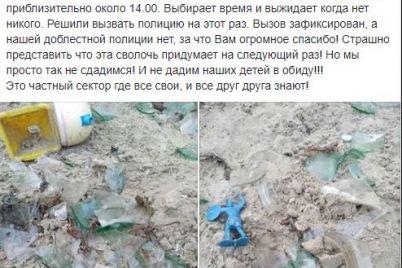 kidal-pakety-s-ekskrementami-v-zaporozhe-neadekvatnyj-muzhchina-napadaet-na-detskuyu-ploshhadku-foto.jpg