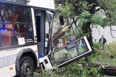komunalnij-avtobus-u-zaporizhzhi-znis-derevo-vodij-potrapiv-do-likarni.jpg