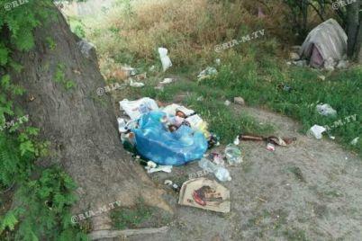 kotlovan-smerti-v-zaporozhskoj-oblasti-prevrashhaetsya-v-pomojku-foto.jpg