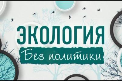 krupnejshie-eko-assocziaczii-ukrainy-vystupili-protiv-ispolzovaniya-ekologii-v-politicheskih-czelyah.jpg