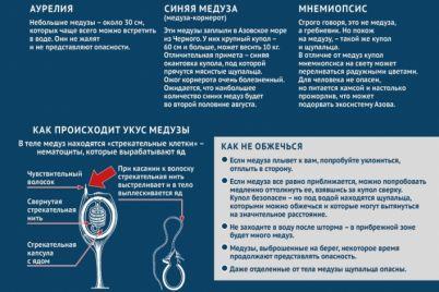 kurort-zaporozhskoj-oblasti-zapolonili-meduzy-video.jpg