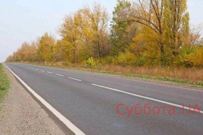 kuski-kozhi-i-luzha-krovi-v-zaporozhskoj-oblasti-na-avtodoroge-obnaruzhili-zhutkuyu-nahodku-video.jpg