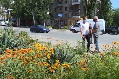 kvitnik-yakij-zaporizhecz-doglyadav-protyagom-20-rokiv-stav-na-zavadi-remontu-miskih-teplomerezh-chi-mozhlivo-virishiti-pitannya.jpg