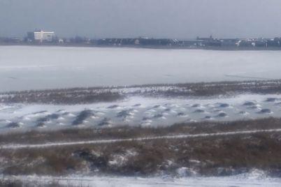liman-v-zaporozhskoj-oblasti-polnostyu-skovalo-ldom-video.jpg
